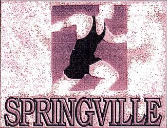 Springville 10K